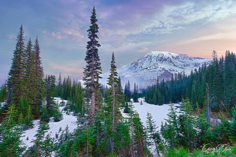 Rainier Twilight